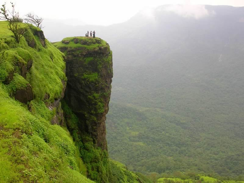 a group of people standing on a cliff in green valley of matheran