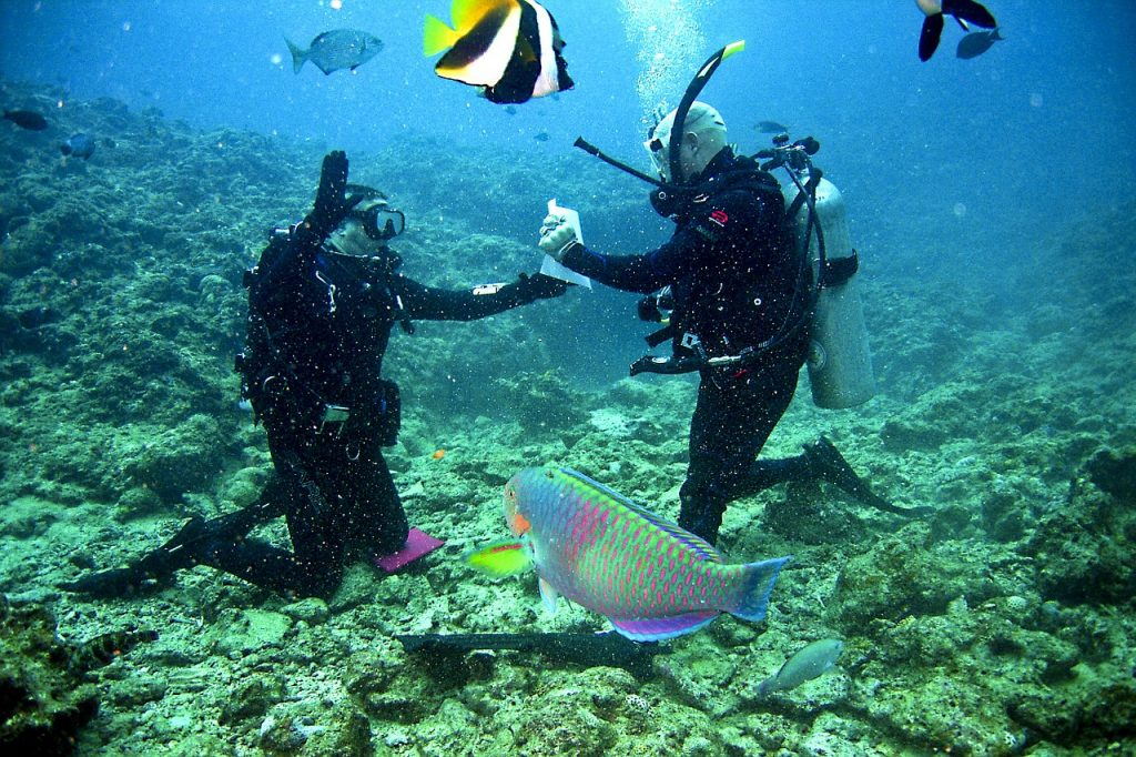 two divers shaking hand while diving