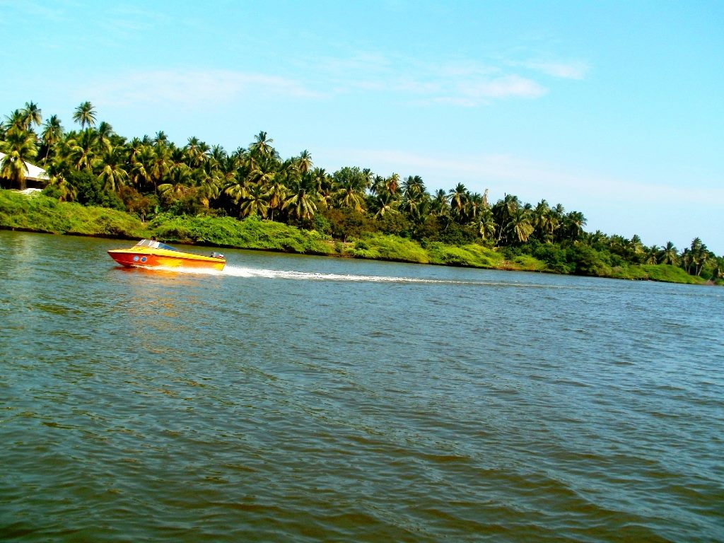 Boat Ride At Chunnambar and coconut trees near river