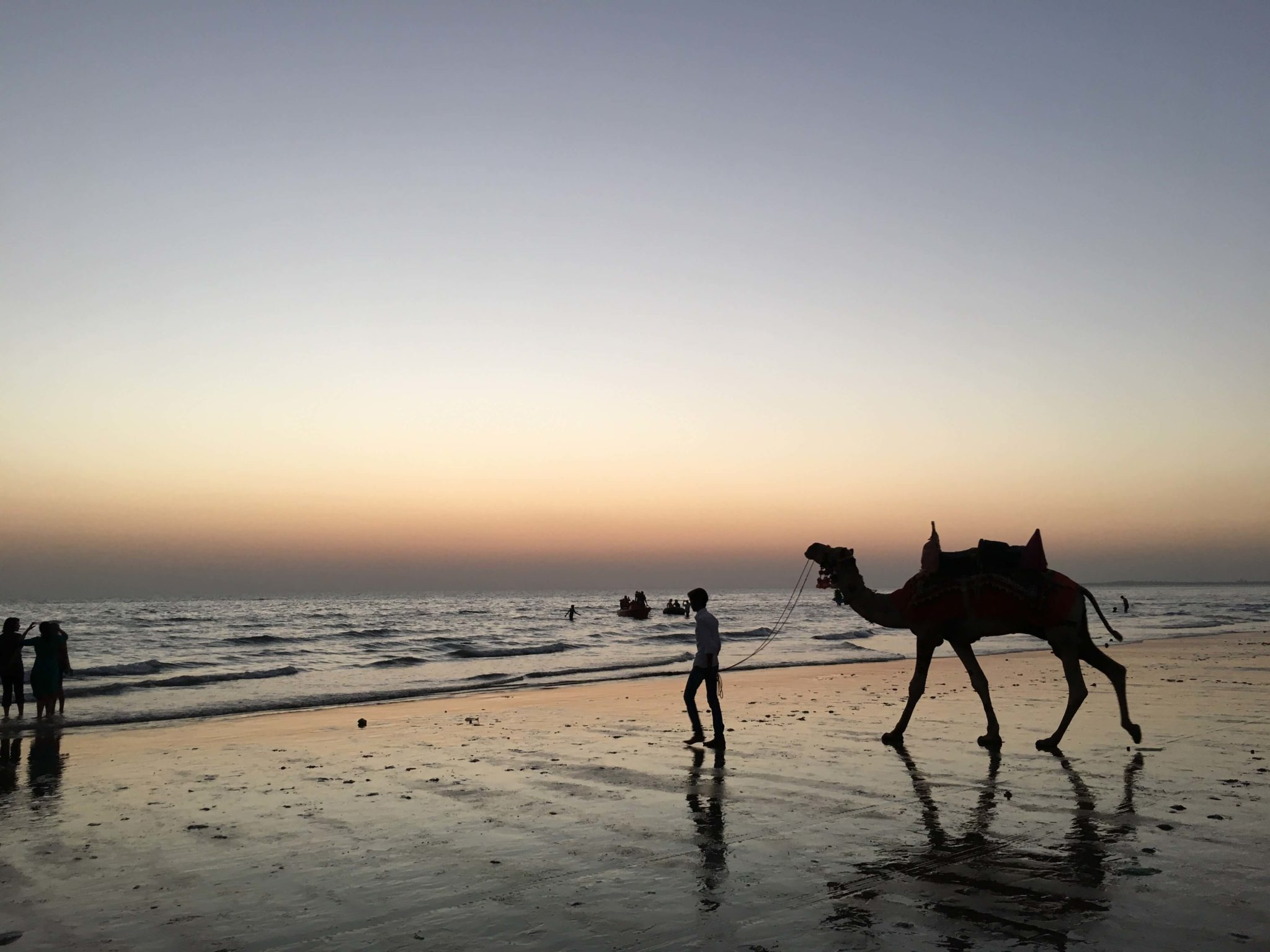 Camel Ride at Mandvi during sunset time