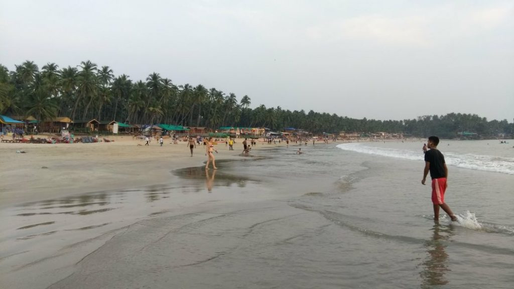 beach with people walking and coconut trees behind