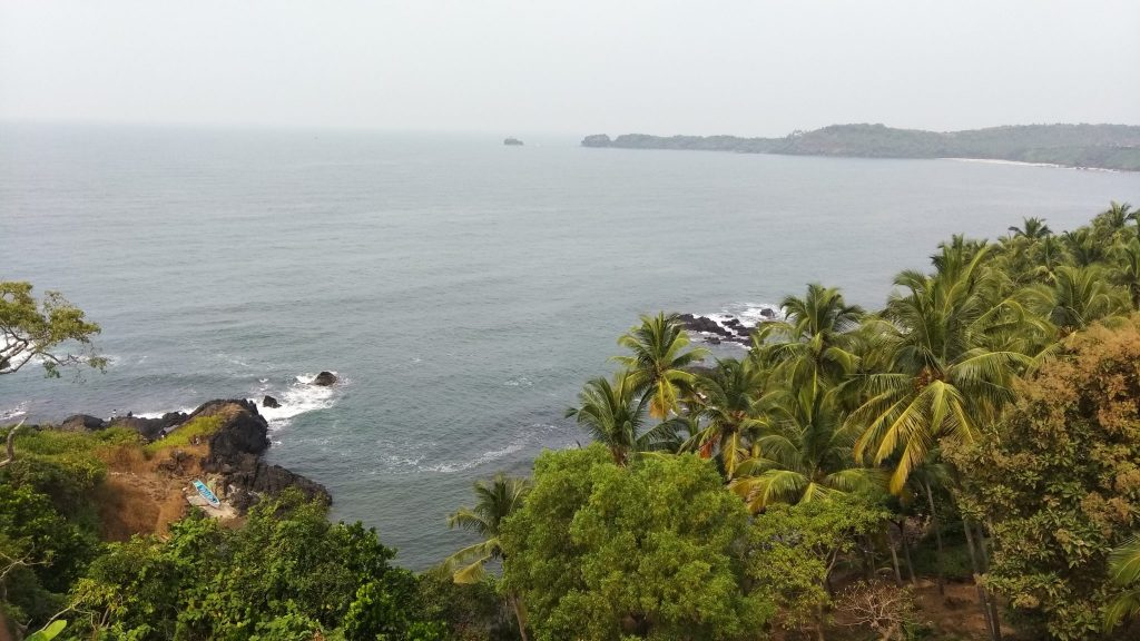 view of beach from hilltop with coconut trees in between