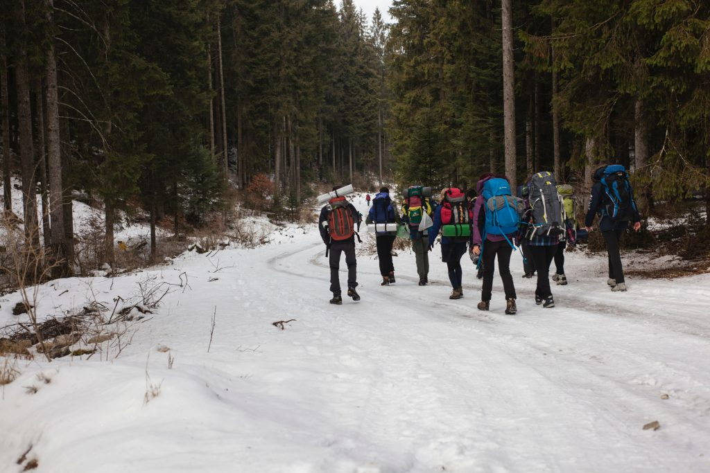 a group of people trekking in snow