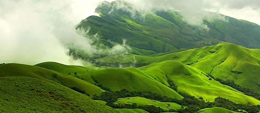 green fields of Chikmagalur