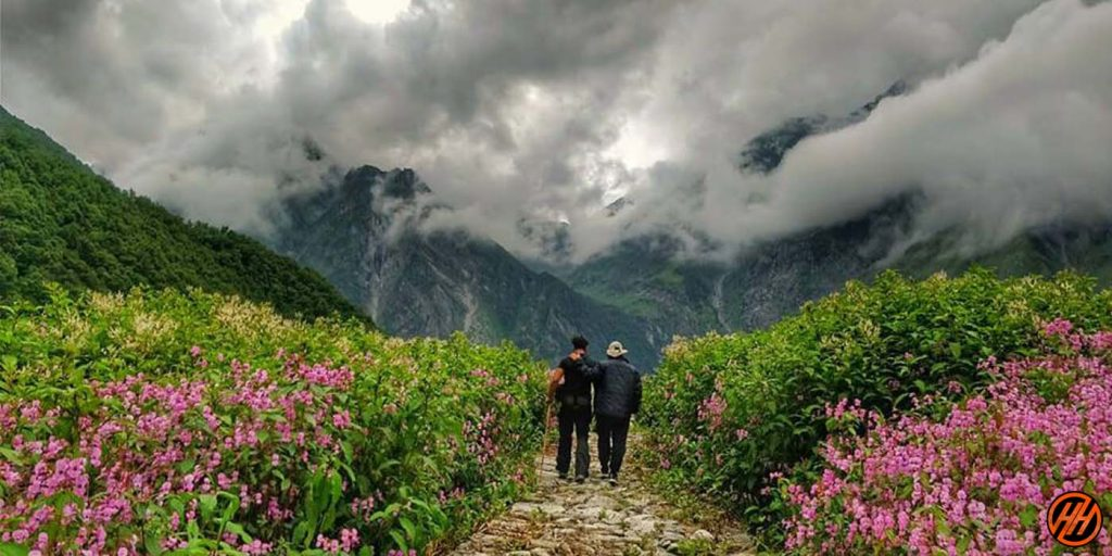 view of valley of flowers with two people walking towards hill